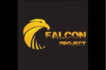 Falcon Project